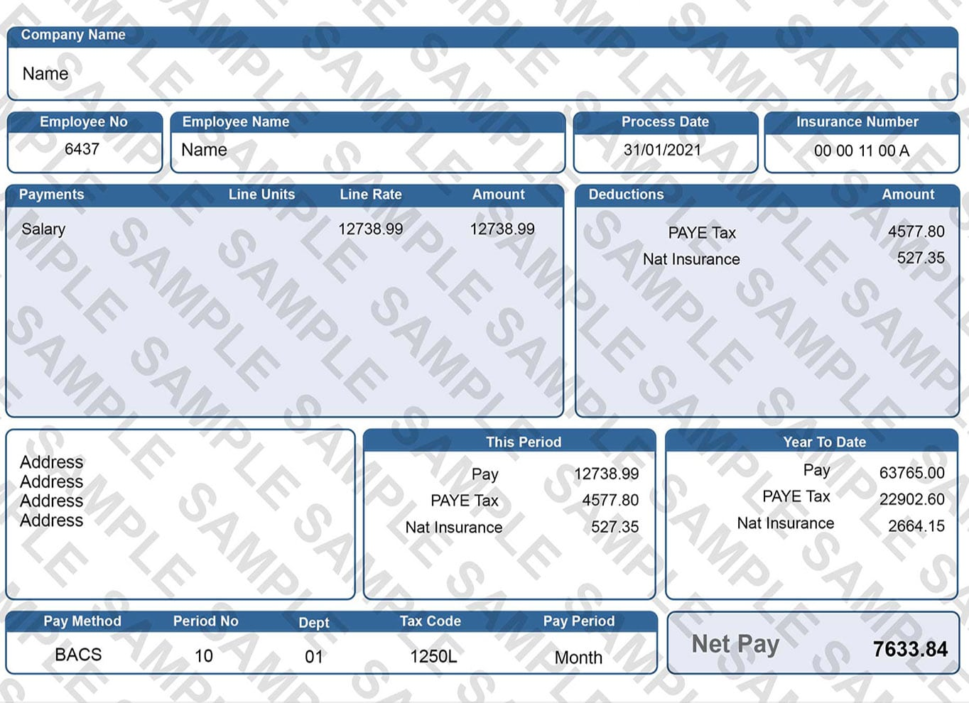 Blue Digital Replacement Payslip